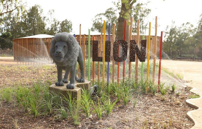 Taronga Western Plains Zoo - Lion Exhibit